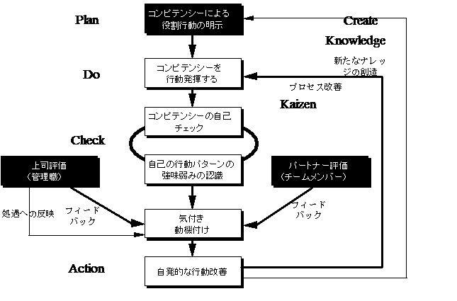 マネジメントシステムとしてのコンピテンシーのチャート図